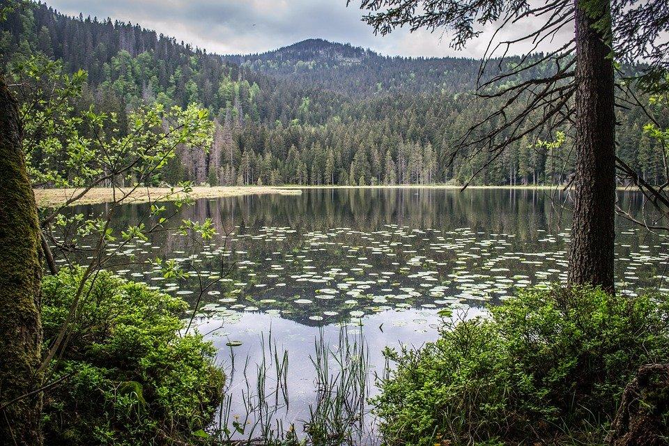 jezero na Šumavě